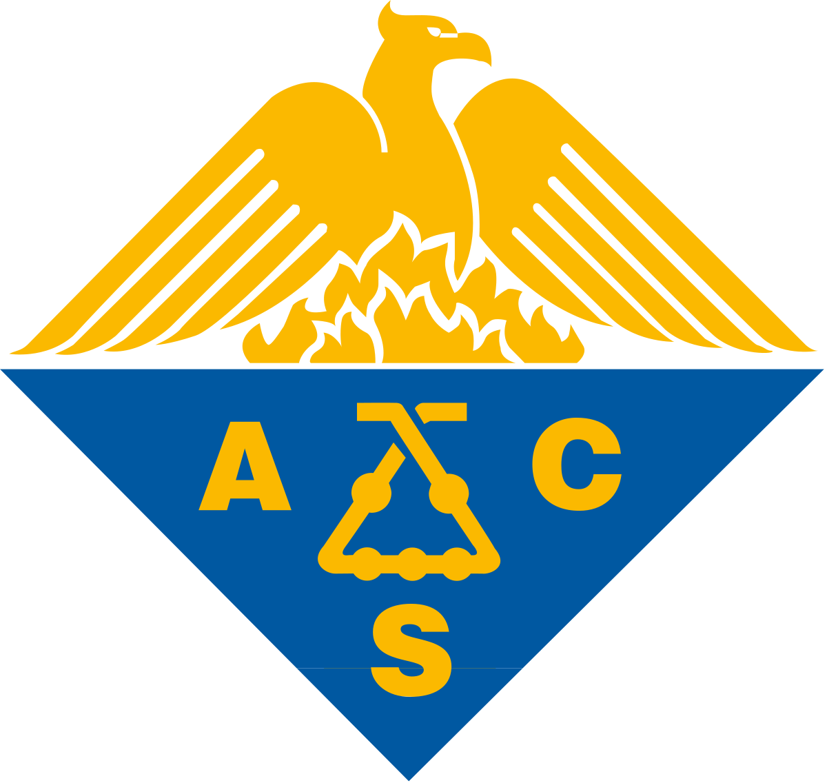 ACS Capítulo Colombia